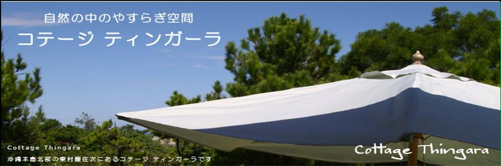 /data/project/153/ティンガーラ.jpg