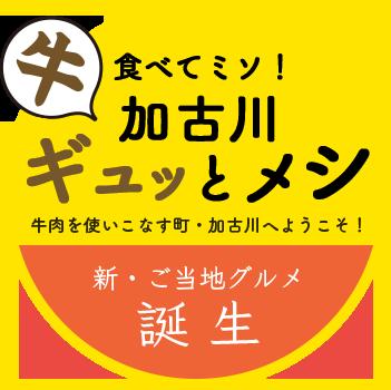 /data/project/208/ぎゅっとめしロゴ.png