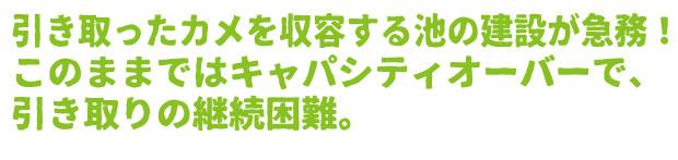 /data/project/310/題名7.jpg?1513877357