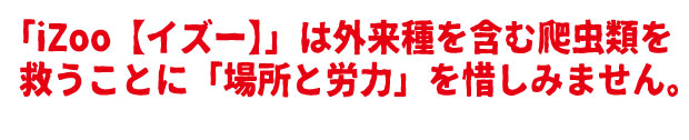 /data/project/310/題名9.jpg?1513877624