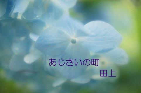 /data/project/401/image6.jpg