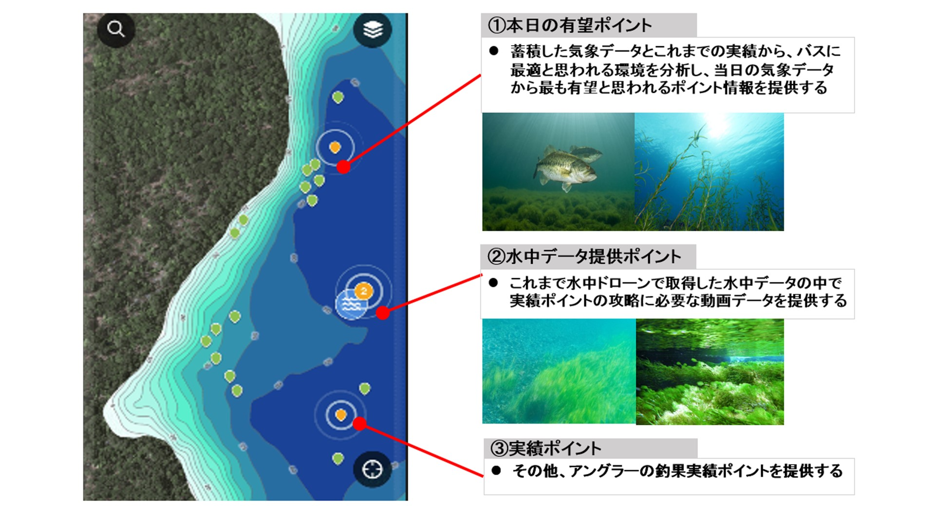 /data/project/455/1.jpg