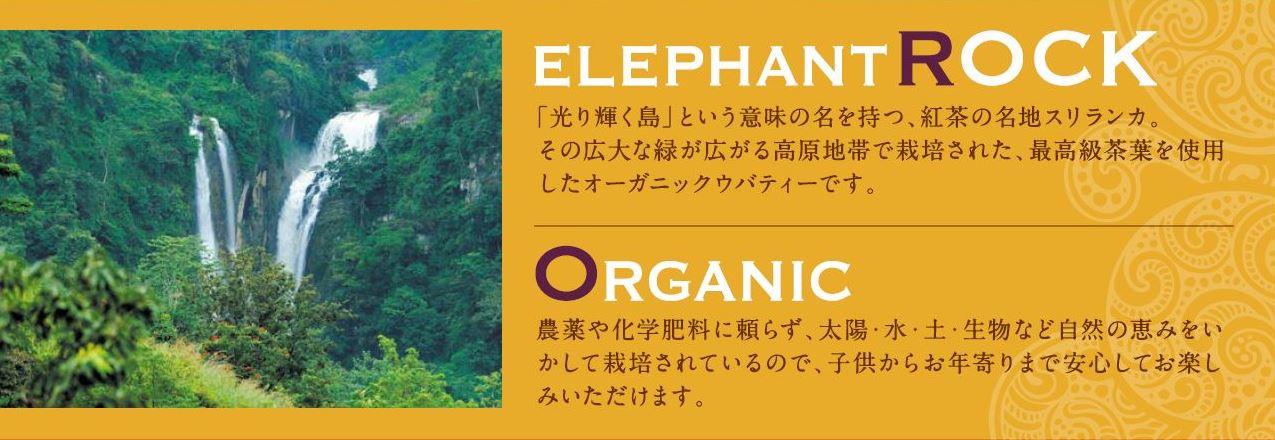 /data/project/488/elephantrock.jpg