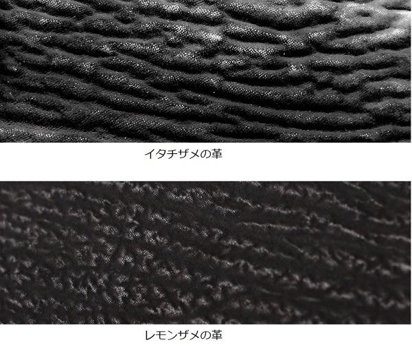 /data/project/547/サメ革.jpg