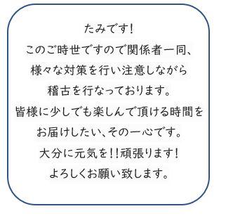 /data/project/608/tami555.JPG