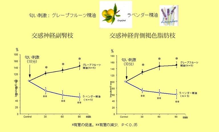 /data/project/705/実験1.jpg