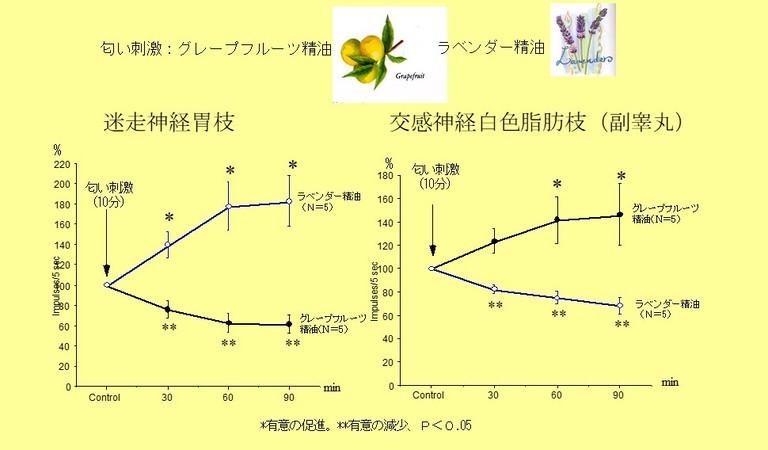 /data/project/705/実験2.jpg