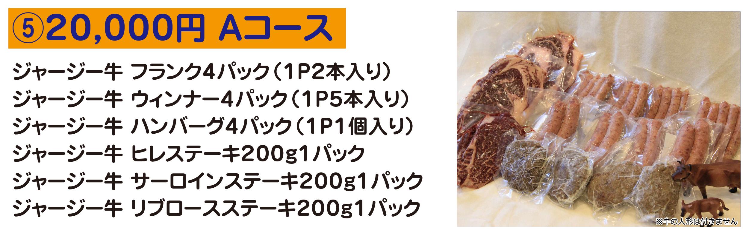⑤20,000円 Aコース ジャージー牛 フランク4パック(1P2本入り) ジャージー牛 ウィンナー4パック(1P5本入り) ジャージー牛 ハンバーグ4パック(1P1個入り) ジャージー牛 ヒレステーキ200g1パック ジャージー牛 サーロインステーキ200g1パック ジャージー牛 リブロースステーキ200g1パック