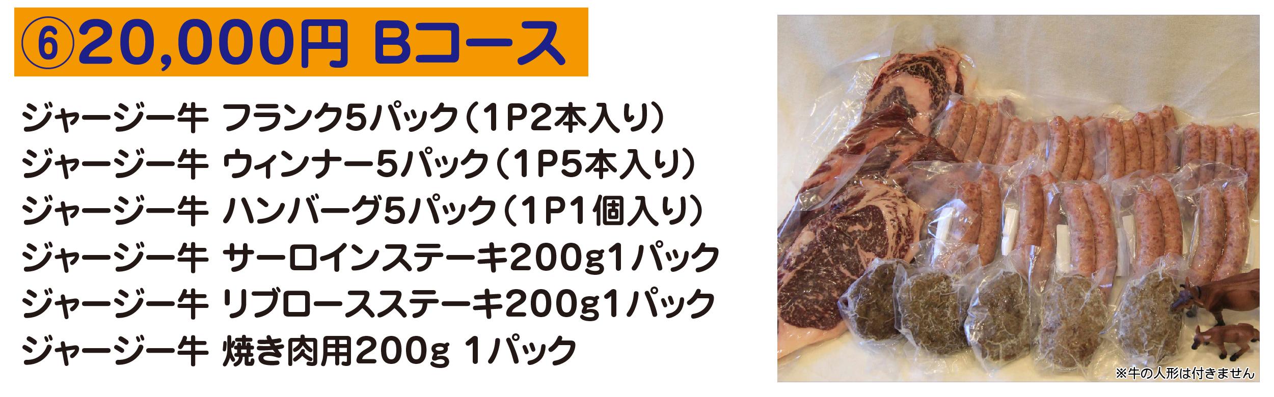⑥20,000円 Bコース ジャージー牛 フランク5パック(1P2本入り) ジャージー牛 ウィンナー5パック(1P5本入り) ジャージー牛 ハンバーグ5パック(1P1個入り) ジャージー牛 サーロインステーキ200g1パック ジャージー牛 リブロースステーキ200g1パック ジャージー牛 焼き肉用200g 1パック