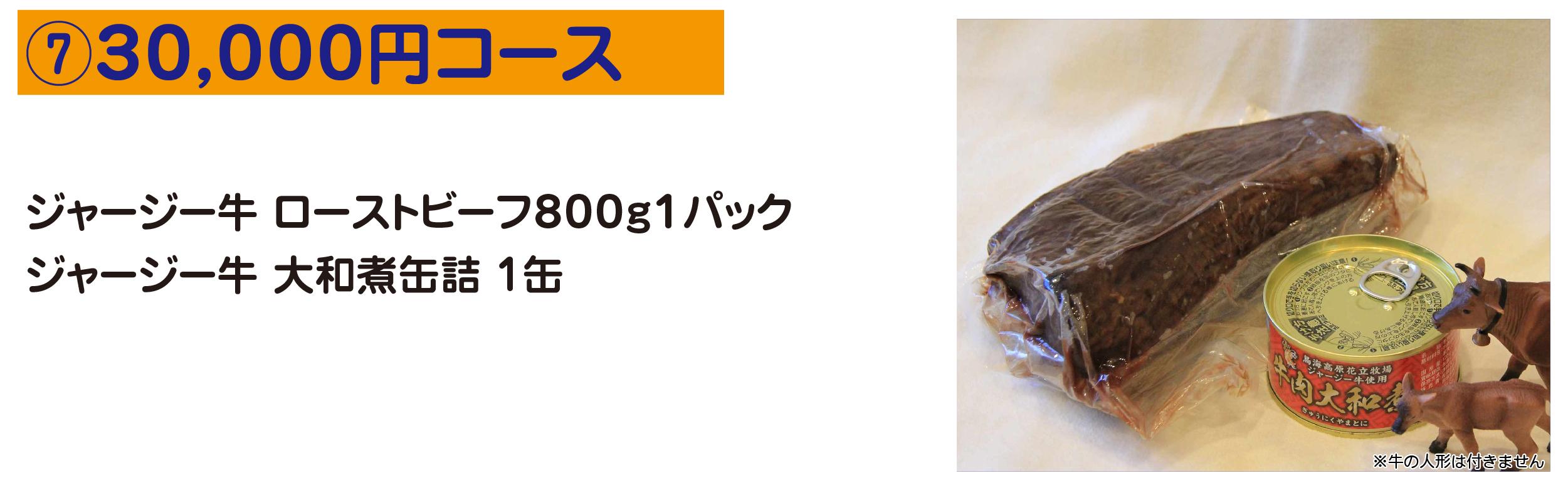 ⑦30,000円コース ジャージー牛 ローストビーフ800g1パック ジャージー牛 大和煮缶詰 1缶