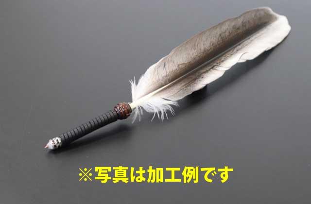 /data/project/723/ペリカンの羽ボールペン.jpg