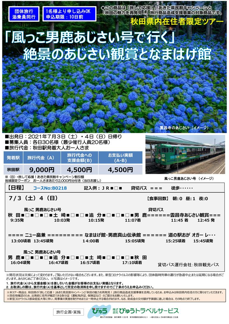 /data/project/828/チラシ 風っこ男鹿なまはげ館-1.jpg