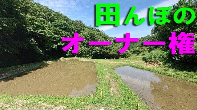 /data/project/829/田んぼのオーナー権.jpg