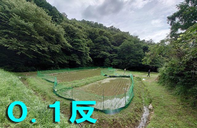 /data/project/829/田んぼのオーナー権_0.1.jpg