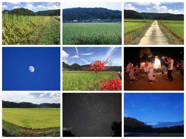 /data/project/829/Collage_Fotor_9-1 - コピー.jpg