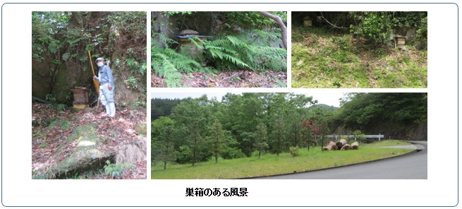 /data/project/873/subakohuukei.jpg